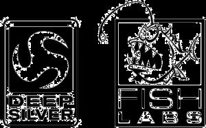 dsfl_logo